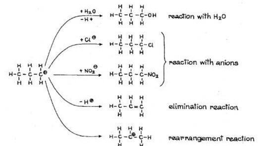 POSSIBLE REACTION OF THE FORMED CARBOCATION