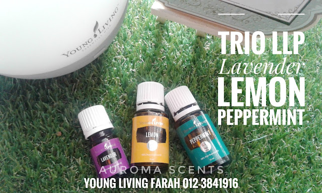 Pengedar Young Living Essential Oils Malaysia, Pengedar Young Living Essential Oils Sri Petaling