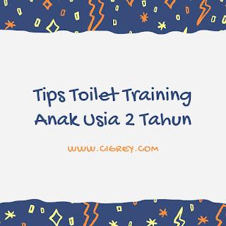 Tips Toilet Training Anak Usia 2 Tahun