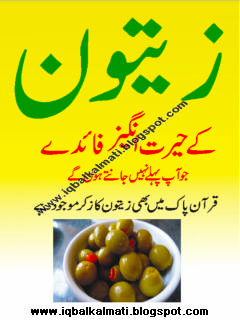Health Benefits of  Olive Oil Plant in Urdu