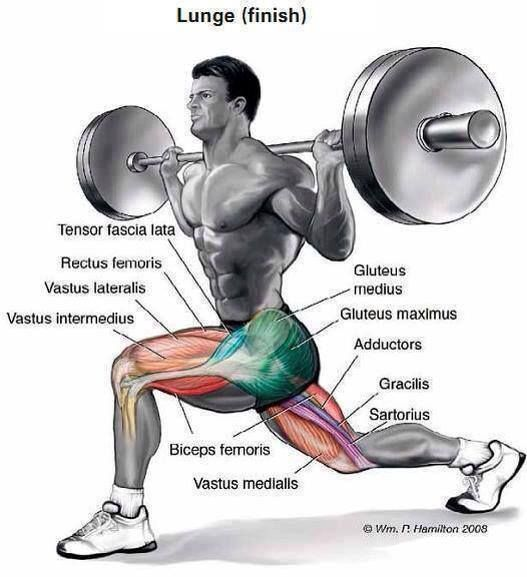 8 Methods To Murder Legs In The Gym