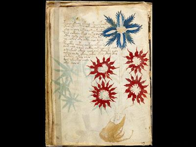 Il misterioso manoscritto Voynich