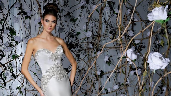 Wallpaper: Wedding Dress 2014