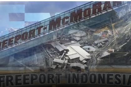 Bos Freeport Ketemu Jokowi, Andi Arief: Sungguh Terlalu