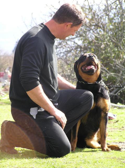 Εκπαίδευση Σκύλων Πάτρα