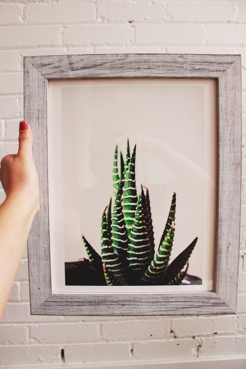 white barn wood, white frame, cactus print