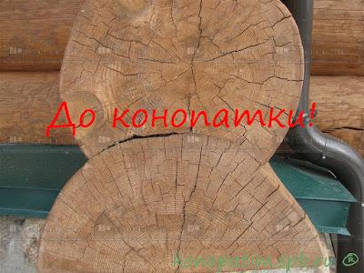 Конопатка сруба ручной рубки в Симагино.