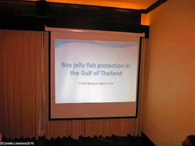 Box jelly fish awareness presentation at U Koh Madsum