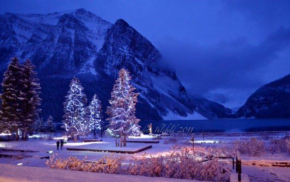 Christmas Tree by Andrea Ihlefeld via Etsy
