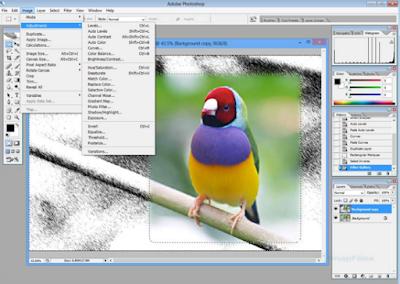 download  Adobe Photoshop CS2 latest version