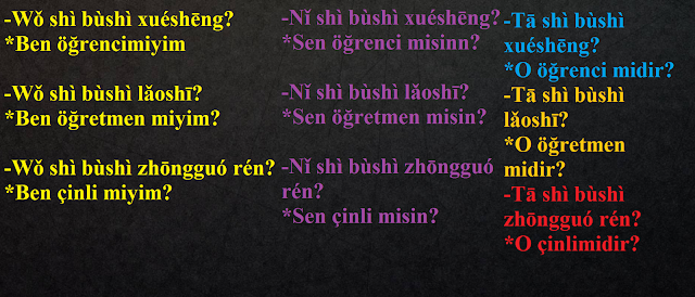 cince-soru-cümleleri,basit-cümleler