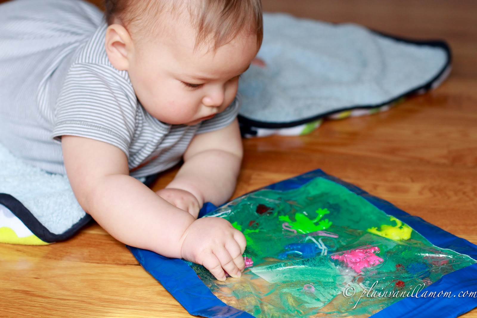 Family Fun Sensory Bag For Babies