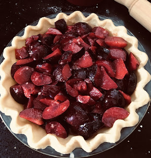 Plum pie ready for its pastry top and then baking