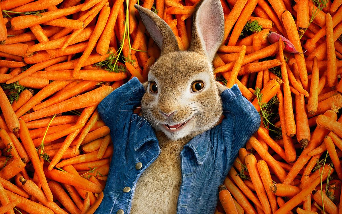 Daniel O Connor Peter Rabbit 2018 Review