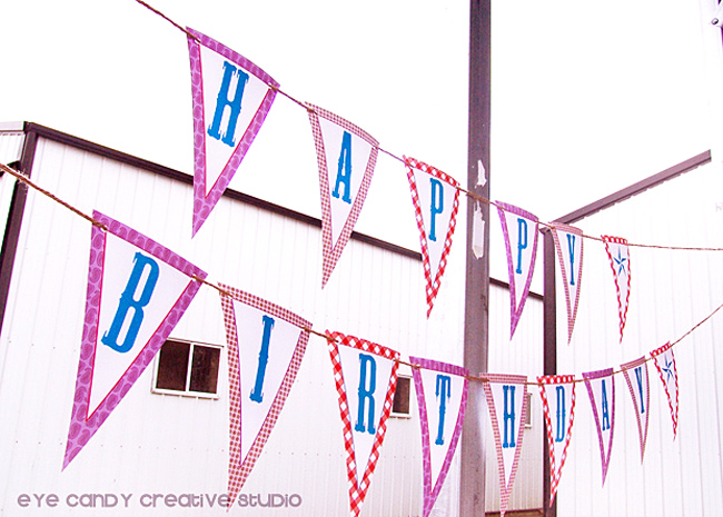 happy birtdhay banner, farm, cowboy birthday party, gingham print