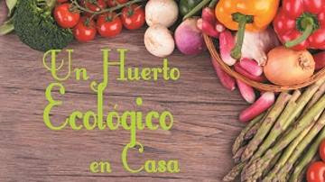 https://www.tutellus.com/ocio-y-vida/vida-saludable/un-huerto-ecologico-en-casa-2011?affref=086b734e722343fa906547e11fcfa115