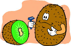 Gambar Buah Kiwi Animasi Bergerak