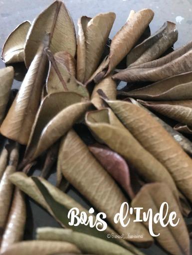 sweet kwisine, cuisine antillaise, martinique, guadeloupe, bouquet garni, herbes aromatiques, persil, oignon-pays, coriandre, chadwon béni, bois d'inde, piment de jamaïque, sauce chien