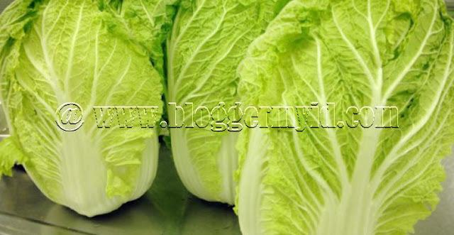 Siapa yang tak mengenal sayuran satu ini? Ya, sayur sawi memang sering dijumpai dibeberapa menu makanan terutama sayuran yang dikonsumsi setiap hari. Cara penyajian sawi pun beragam, mulai dari ditumis hingga dibuat sop.   Nah, apabila Anda tidak suka dengan sayuran sawi, mulai saat ini sebaiknya Anda harus menyukai sayur satu ini mengingat kandungan nutrisinya yang tinggi.   Tak hanya kaya akan kandungan nutrisinya saja, bahkan manfaat sawi juga bagus akan vitaminnya sehingga bisa dimanfaatkan untuk mencegah berbagai jenis penyakit.   Seperti pada sayuran hijau lainnya, sawi juga mengandung senyawa penting seperti folat, karbohidrat, vitamin A, vitamin K, vitamin C, thiamine, asam pantotenat, kalium, flavonoid hingga fitonutrien yang membuat manfaat sawi banyak jenisnya.   Manfaat sawi tersebut bisa Anda dapatkan dengan cara mengonsumsinya secara teratur untuk dijadikan sumber nutrisi dan sumber serat supaya bisa melengkapi asupan nutrisi sehari-hari.   Setidaknya terdapat 12 manfaat sawi yang akan Anda dapatkan jika mengonsumsi sayuran ini secara rutin.     Sebelum lanjutkan, Anda bisa baca mengenai manfaat buncis yang luar biasa untuk kesehatan.  Apa saja manfaat yang di dapatkan? Yuk simak ulasannya berikut ini.     1. Meminimalisir Adanya Resiko Peyakit Diabetes Tipe 2  Seperti diketahui bahwa sayur sawi merupakan salah satu jenis sayuran yang kaya akan kandungan asam alfa linoleat dan omega 3 yang berperan penting untuk kesehatan otak dan menghindarkan Anda dari terjadinya penyakit diabetes.     Tak hanya itu saja, manfaat sawi yang terpenting yakni untuk meningkatkan kesehatan jantung supaya bisa berfungsi secara maksimal.   2. Melawan Radang dan Pembentukan Plak Arteri  Manfaat sawi lainnya juga berfungsi baik untuk melawan peradangan dan pembentukan plak dibagian pembuluh arteri karena adanya kandungan fitonutrien pada sawi.     Supaya bisa bekerja secara optimal, dibutuhkan beberapa buah pendukung seperti alpukat dan minyak zaitun.     Ya, alpukat dan miny