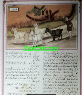 Kali Ka Karnama By Ali Akmal Taswar