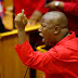 SA Should Grant Mugabe Political Asylum says Malema's Party
