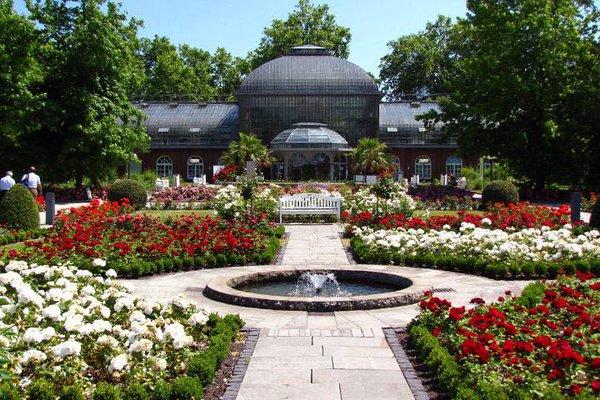 حديقة بالمن غارتن