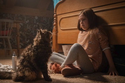 Review of Sem ' Pet Sematary ': A Disturbing New View of Stephen King Classic