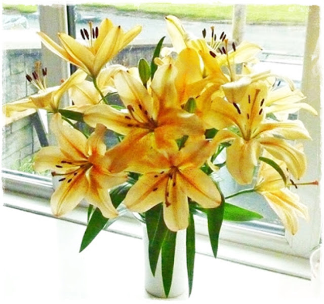 beautiful-lilies