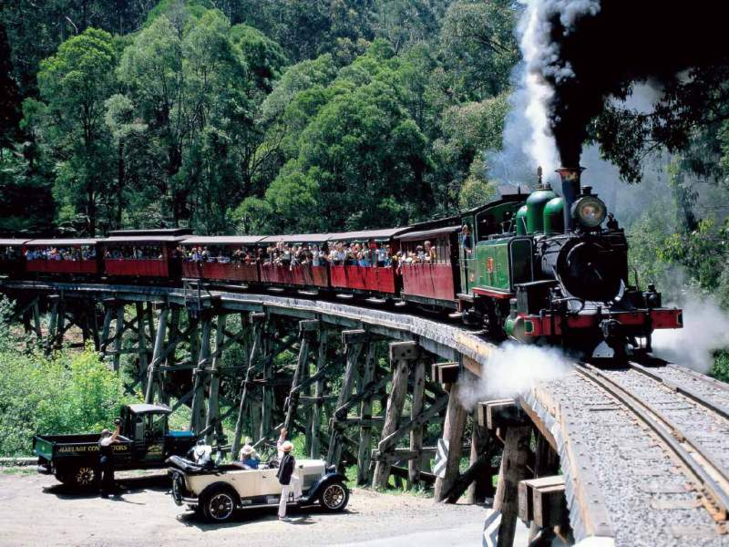 gray line puffing billy crossing historic trestle bridge