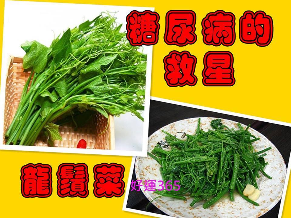 憂遁草 + 馬草汁 + 草本植物 : 龍鬚菜(佛手瓜苗鬚)-----降低血糖