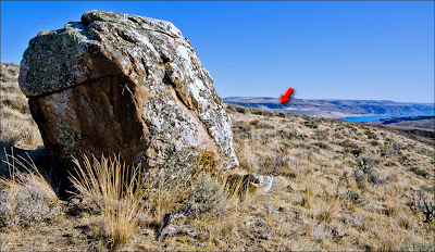 Another Ice-rafted erratic boulder left by Ice Age Floods from Glacial Lake Missoula.