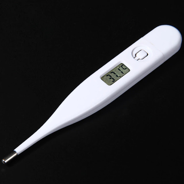 Coupon LCD Screen Digital Thermometer