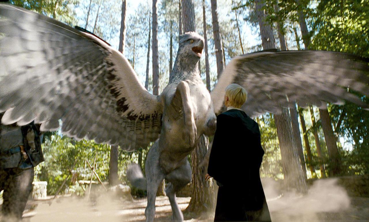 teoria newt scamander apareceu em harry potter e prisioneiro de azkaban house hogwarts newt scamander apareceu em harry potter