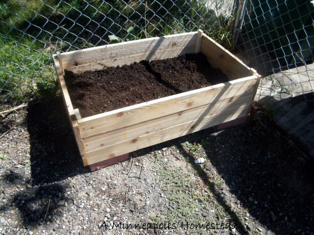 how to make an easy inexpensive wood planter minneapolis