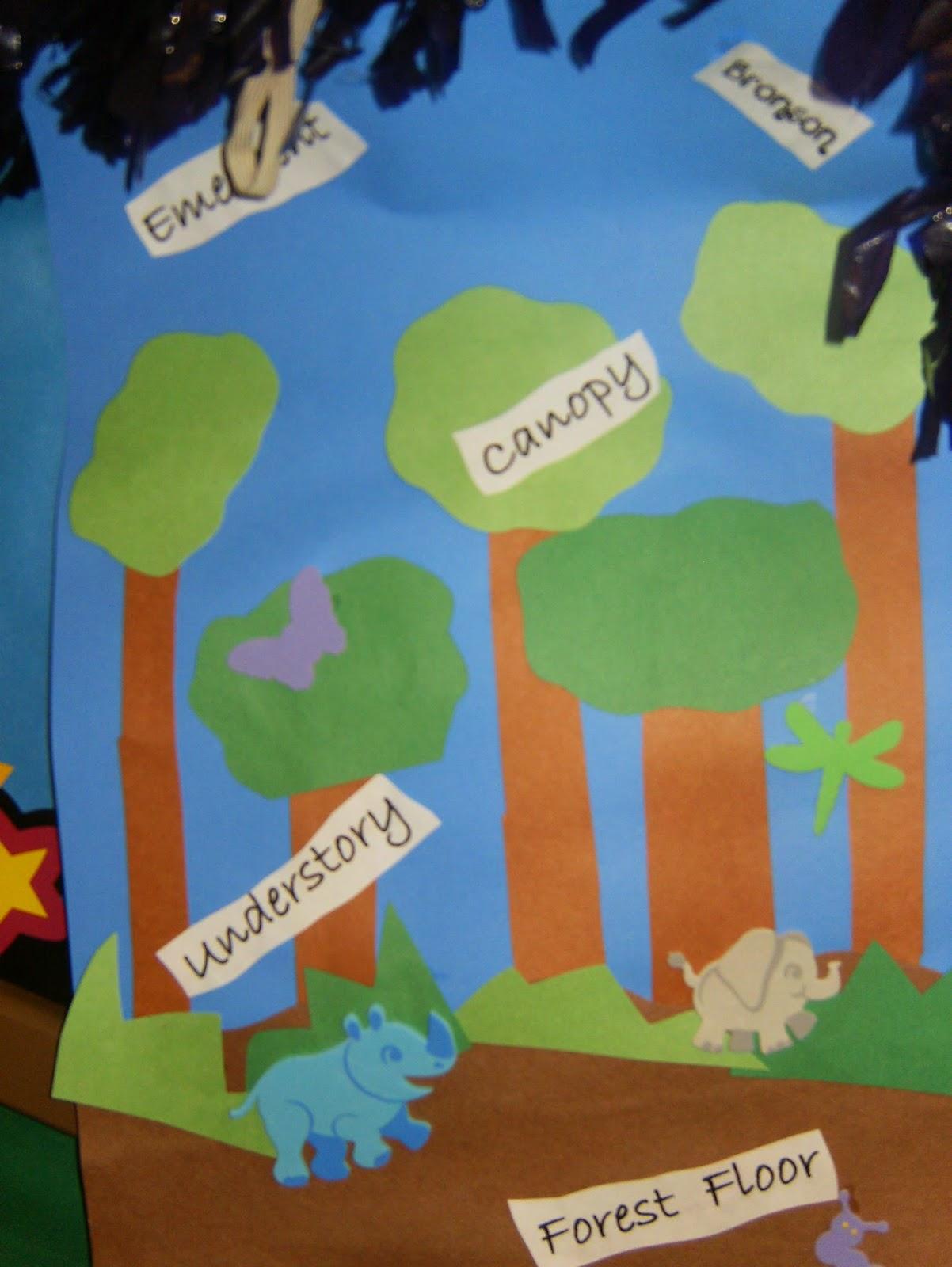 C C Preschool Factory Jungle Fun