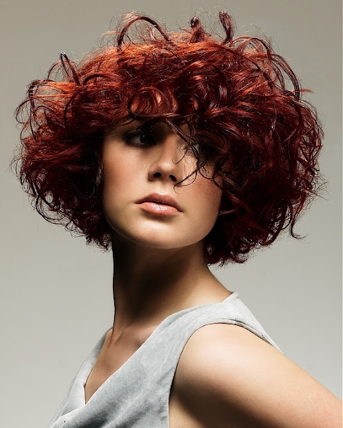 curly bob hairstyles december