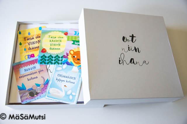 vauvavuoden muistolaatikko