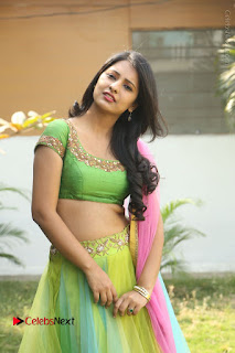 Actress Nikitha Bisht Stills in Lehenga Choli at Pochampally Ikat Art Mela Launch  0238.JPG
