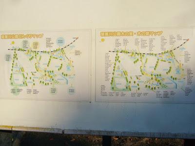 寝屋川公園どんぐりマップ 寝屋川公園木の実・木の葉マップ