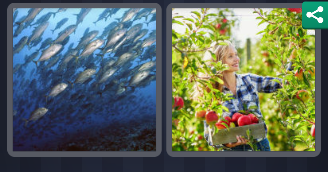 4pics1word answers 8 letters daily challenge 4 pics 1 word answers solutions level 65 plenty 16182