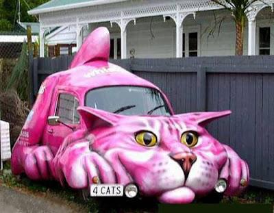 Veículo gato