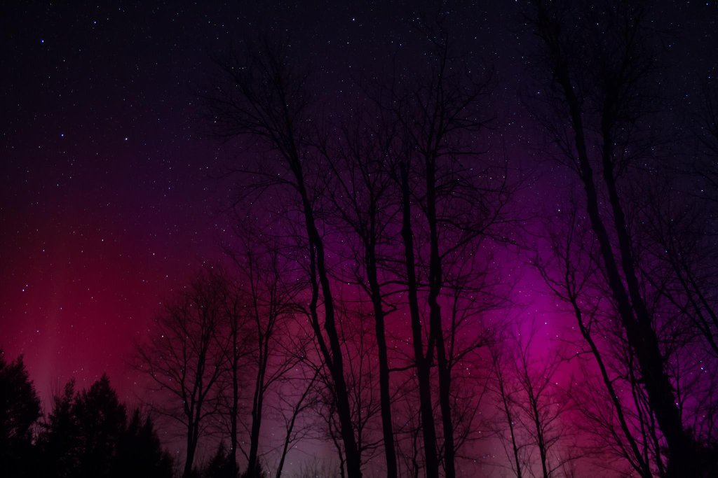 Pink Aurora Borealis and starry sky