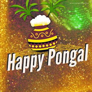 Latest Pongal wishes Sparkling good greetings image.jpg