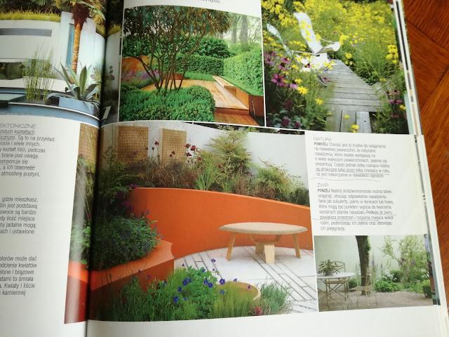 kolor pomarańczowy w ogrodzie