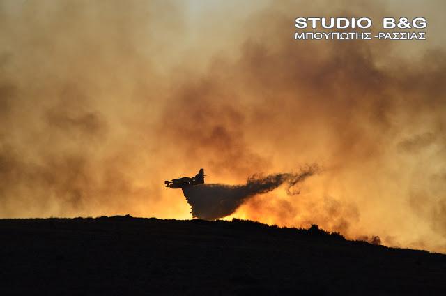 Σε υψηλό κίνδυνο για πυρκαγιές η Αργολίδα με 40 βαθμούς και σήμερα