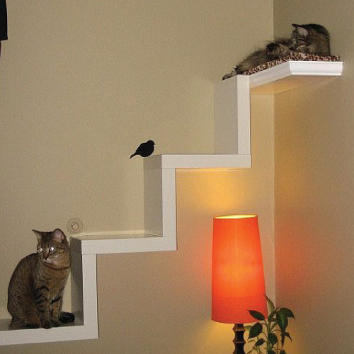 Cats Enjoy High Places So They Can Keep Watch And Look Down On Their  Surroundings. Create A Cat Stairway To Heaven Using Ikea Lack Shelves.