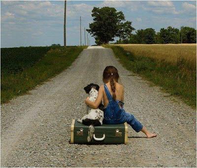 Fotos de Colección: niña y su mascota en camino