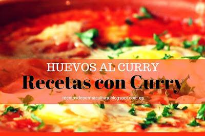 Recetas con Curry Vegetarianas
