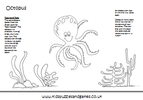 Picasso Preschooler: Happy Friday, Last day of Octopus Ollie!