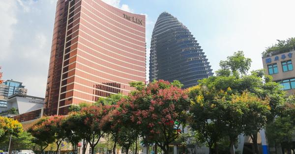 台中西屯|朝馬三街|台灣欒樹揮灑黃綠紅繽紛色彩